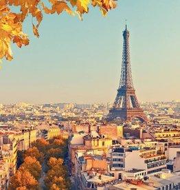 Parijs Fotobehang Eiffeltoren 366x253cm