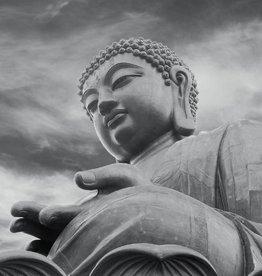 Fotobehang Buddha 366x253cm