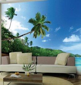 Fotobehang Palmboom aan Strand 360x253cm
