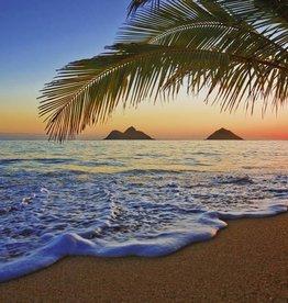 Fotobehang Fotobehang Pacific Sunrise 366x254 cm