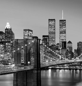 Fotobehang Fotobehang Manhattan Skyline at Night 366x254 cm