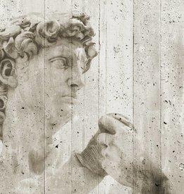 Fotobehang Fotobehang David Street Art 366 x 254cm