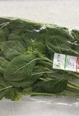 Kraprao/ Basil Leaf (100gr.)
