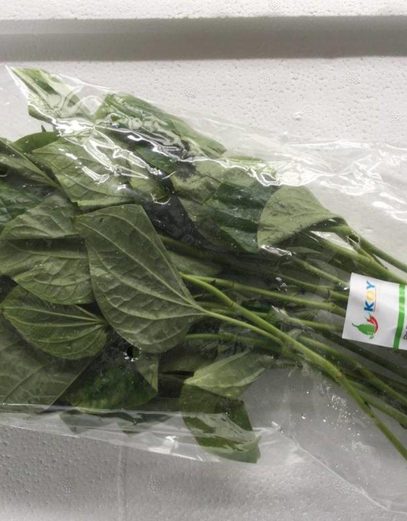 Chapu Leaf (100gr.)