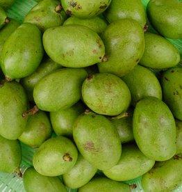 Green Mango Sour _1 kg.