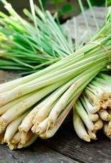 Lemon Grass/ Sereh_ 1 kg.