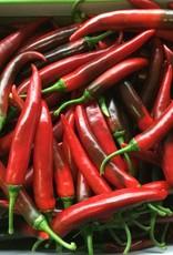 Pepper Rood Large _1 kg.