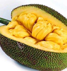 Jackfruit_stuk gesneden. (100gr.)