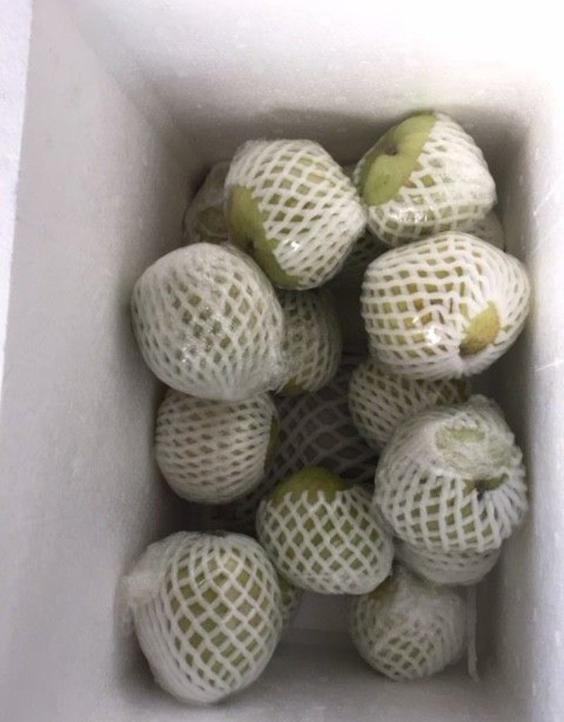 Guava (1kg.) Thai