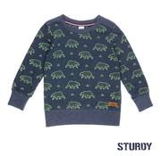 Sturdy sweater