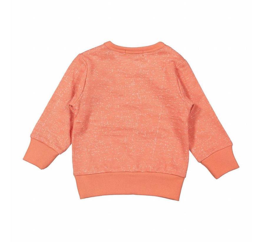 32Z-29523 sweater