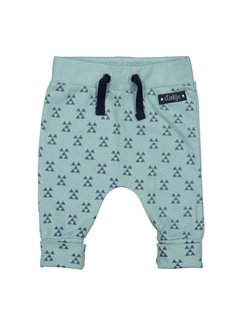 Dirkje 31Z-29559 pant light green