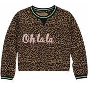 Quapi Lies Leopard