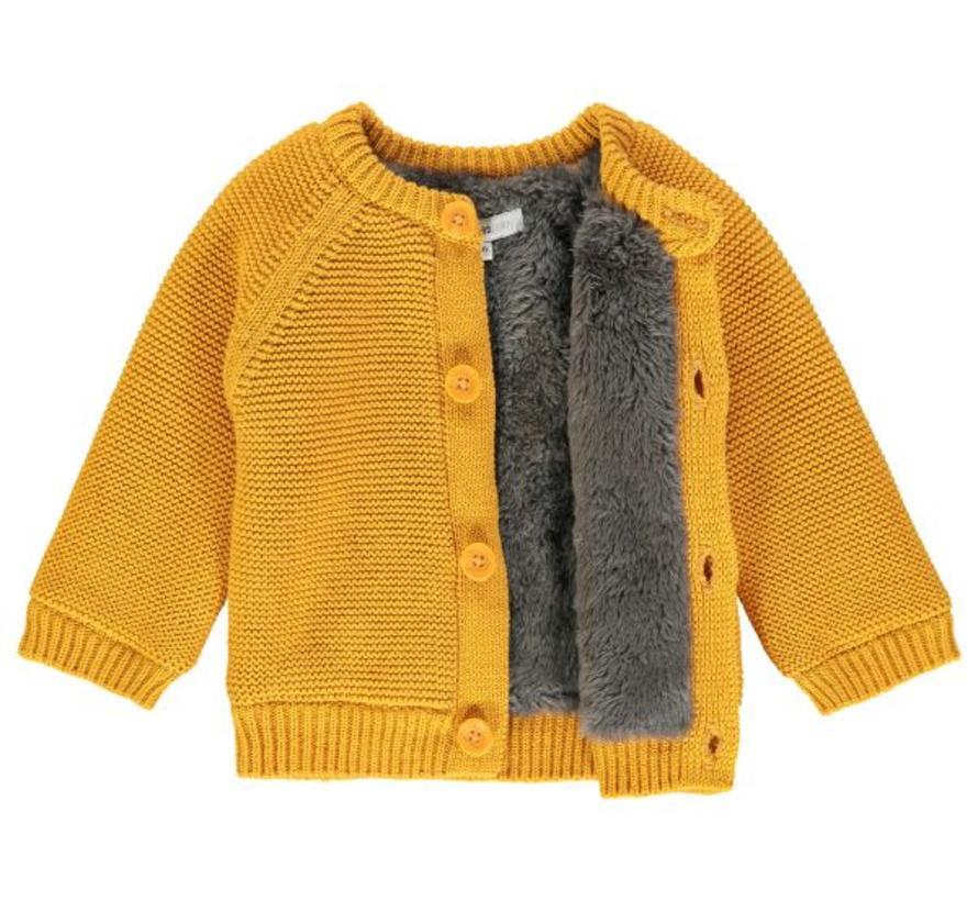 67401 Noppies knit honey yellow