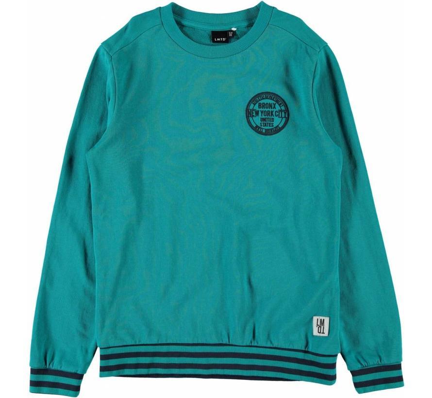 sweater vanaf maat 140