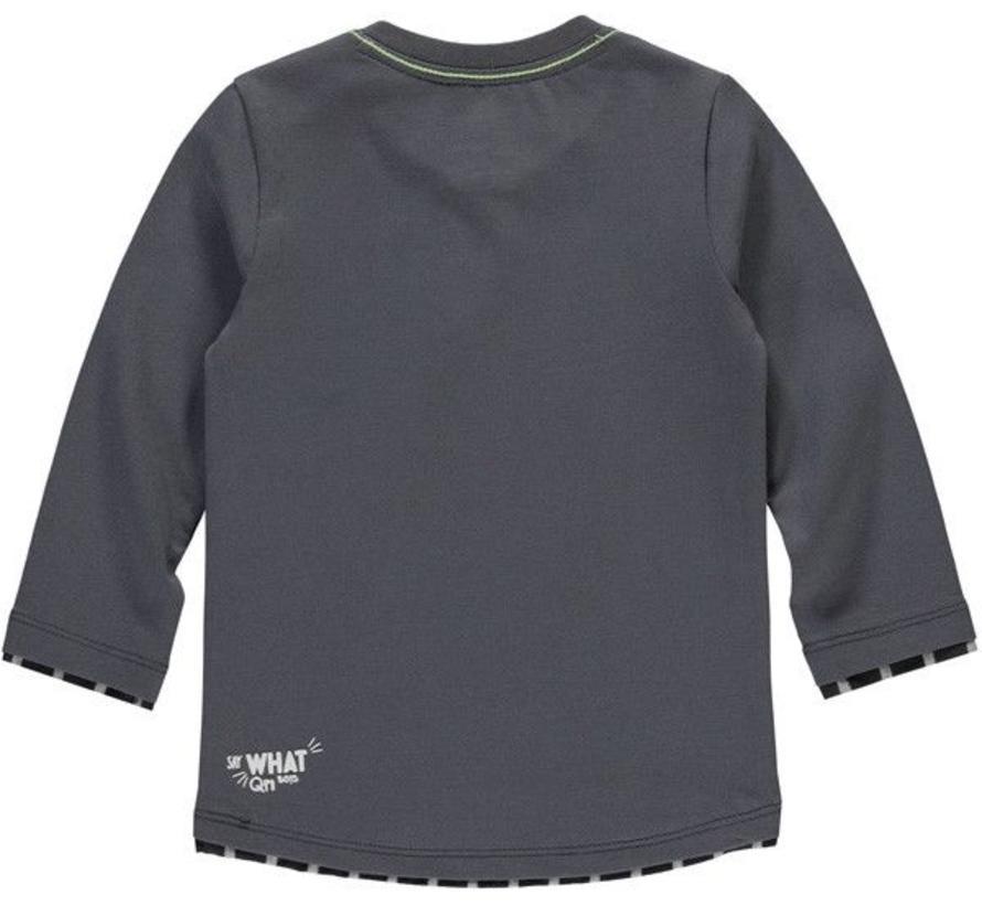 Raily grey