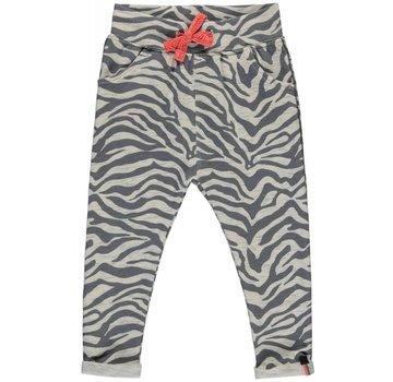 Quapi Resi grey zebra