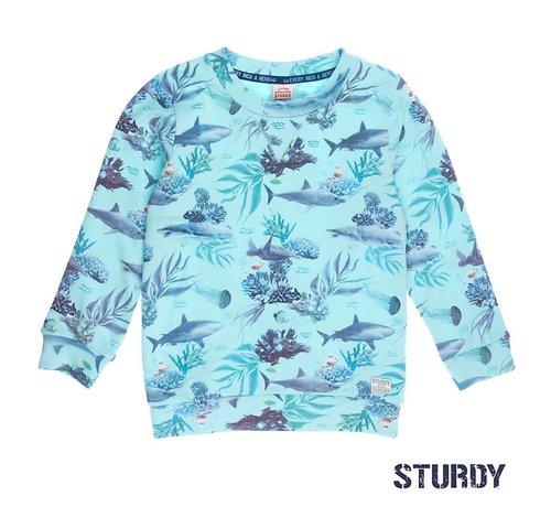 Sturdy 71600326 sweater mint