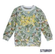 Sturdy 71600319 sweater grey Melange