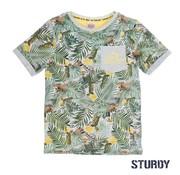 Sturdy 7170013 t-shirt grey melange