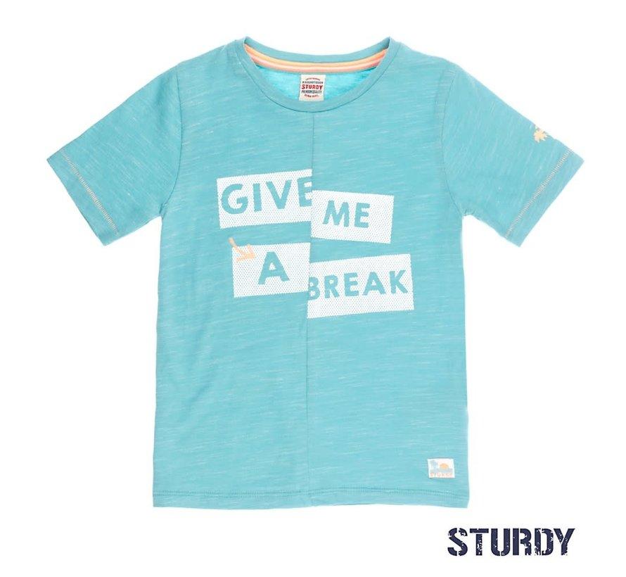 C71700245 tshirt mint