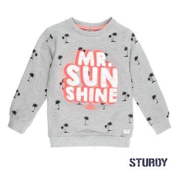 Sturdy 71600328 sweater grey melange