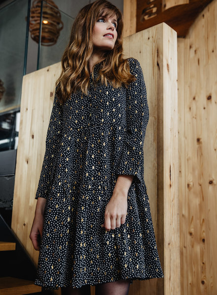 Golden Details Collar Dress