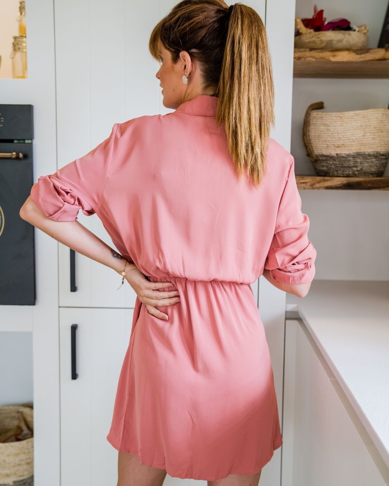 Julia Dress Roze 1378