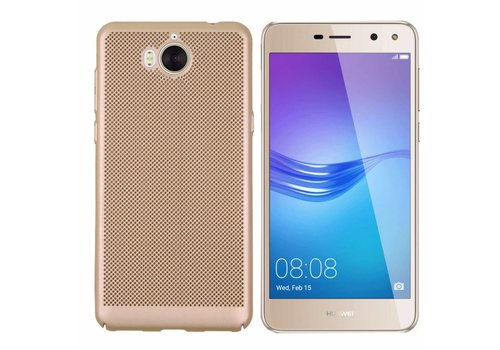 Colorfone BackCover Holes Y5 2017/Y6 2017 Goud