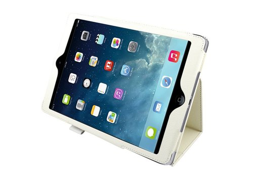 Colorfone Bus. Pro iPad Air Wit