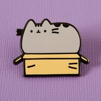 Punky Pins emaille Pin - Pusheen in a Box