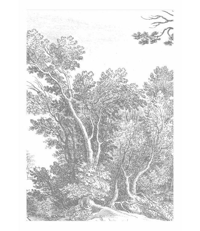 Fototapete Engraved Landscapes, 194.8 x 280 cm