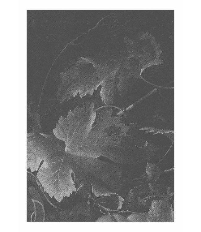 Fototapete Black & White Flowers, 194.8 x 280 cm