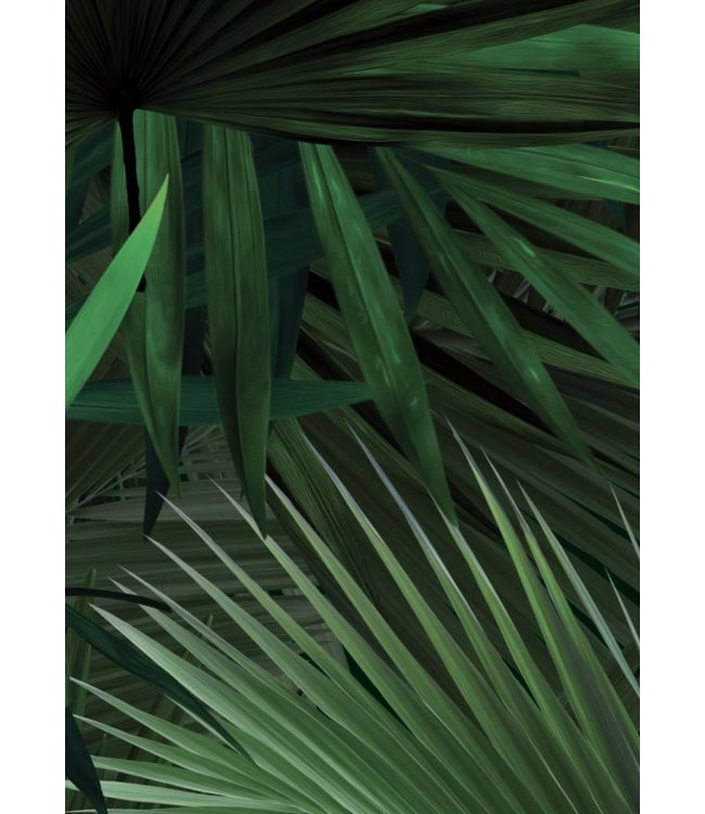 Botanical Tapete Palm