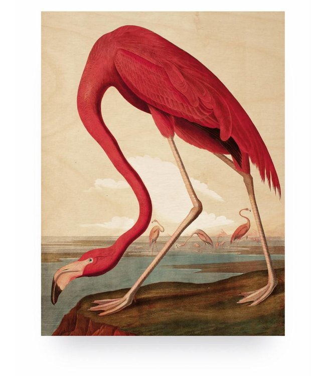 Holzbilder, Flamingo, M, 60 x 80 cm