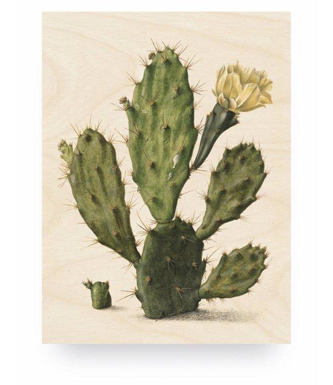 Holzbilder, Botanical Cactus, M, 60 x 80 cm