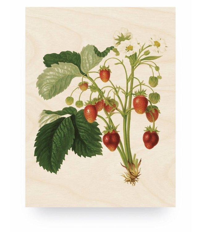 Holzbilder, Botanical Strawberries, M, 60 x 80 cm