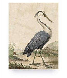 Heron, S