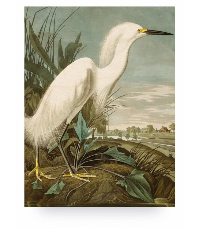 Holzbilder, Snowy Heron, L, 75 x 100 cm