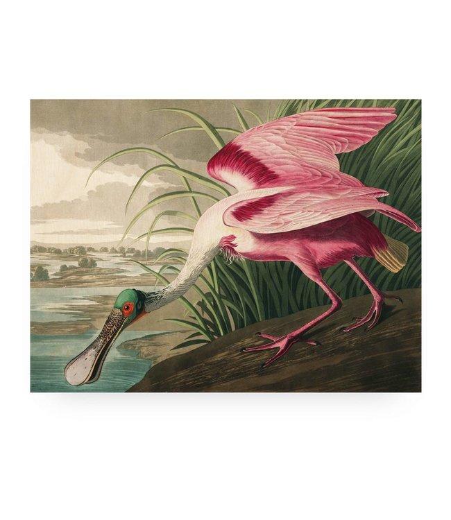 Holzbilder, Roseate Spoonbill, L, 100 x 75 cm
