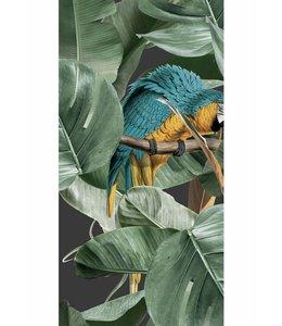 Tapete Botanical Birds