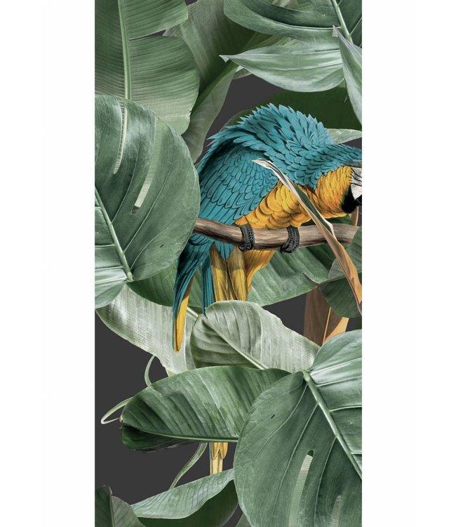 Tapete Botanical Birds, Schwartz, 97.4 x 280 cm