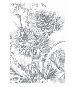 Fototapete Engraved Flowers
