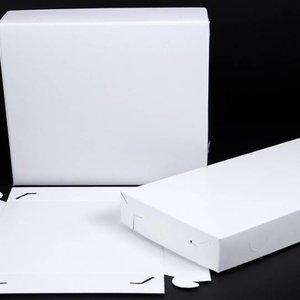 Levering uit voorraad pallet cateringdozen 50x per pak, 18 pakken