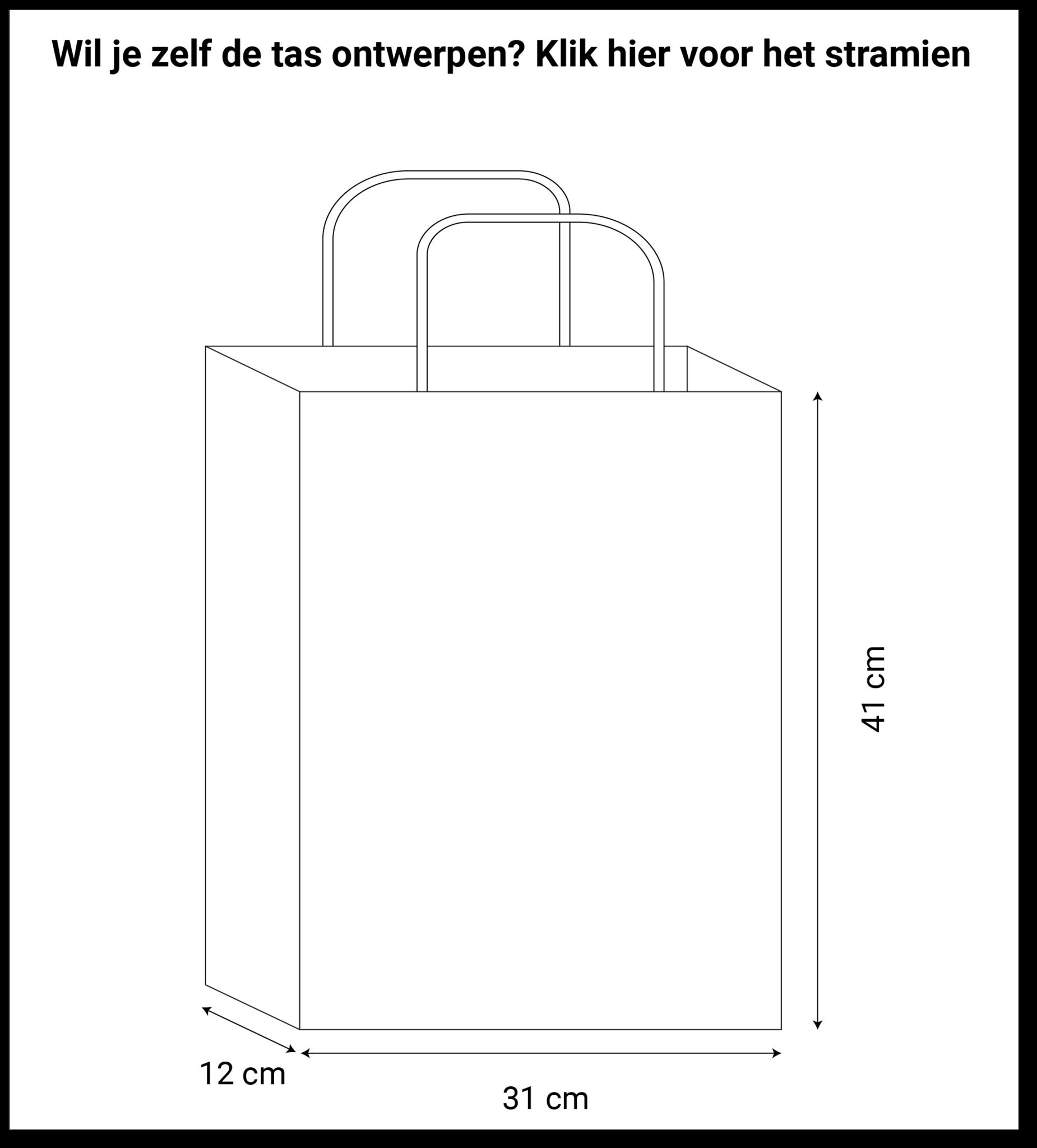 maatvoering papieren tassen 31x12x41cm