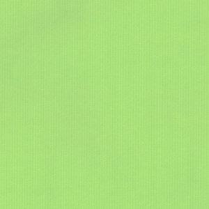 Levertijd ca. 3 werkdagen Inpakpapier Licht Groen 50cm x 125mtr