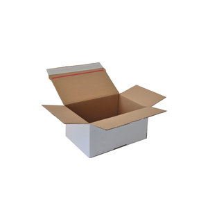 Levering uit voorraad Autolock dozen wit 213x153x109mm
