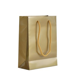 Levering uit voorraad 10x cadeautasjes Goud A5