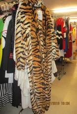 AUGUSTIJNEN tijger 164 huurprijs 20
