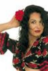 ABC CArnaval haarclip roos rood